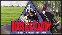 Hoosier Daddy Cow Horse