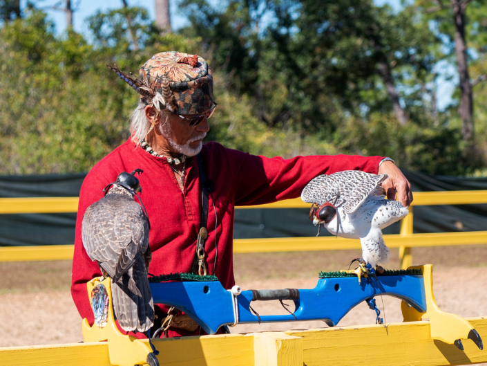 Falconry Master with Peregrine & Deer Falcons
