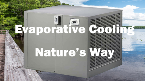 Evaporative Cooling Natures Way